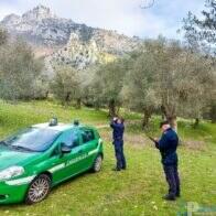 parco dell'olivo a Venafro